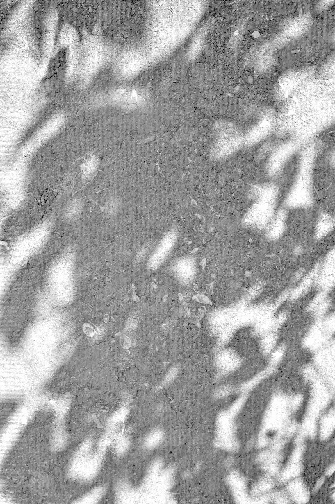 JPL_8151 copie.jpg, 2 mo